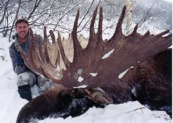 World Record Moose 1
